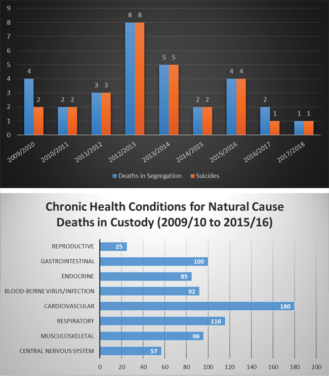Bar Charts for Deaths in custody