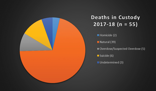 Deaths in Custody 2017-18 (n=55 Pie Chart)